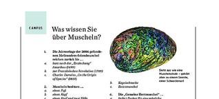 GEO Campus: Was wissen Sie über Muscheln?