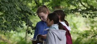 Stiftungswald Stodthagen: Humboldtschüler vergleichen Wald aus Felm mit Regenwald bei Sao Paulo | shz.de