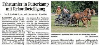 Fahrturnier in Futterkamp mit Rekordbeteiligung