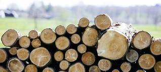 Holz als Baustoff: In München entsteht die größte Holzbausiedlung Europas | BR.de