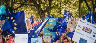 Lehren aus dem Brexit: Warum haben die Remainer verloren?