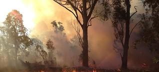 Australiens Regierung: Es brennt halt