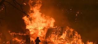 Wie in Australien lebende Bremer die Buschbrände erleben