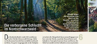 Die verborgene Schlucht im Nordschwarzwald