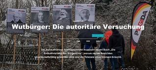 Wutbürger: Die autoritäre Versuchung