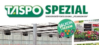 TASPO Spezial Pelargonien 2020