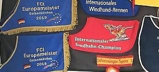 Schnellste Windhunde kommen aus Oppenheim