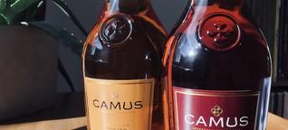 BEGINNER'S TASTING #04: Camus // COGNAC-EXPERT.COM