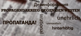 Spiegel der Gesellschaft: Zur Debatte um Desinformationen