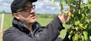 Der Feldversuch: Forschung zur Dürre in der Landwirtschaft