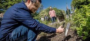 Mit dem Handy zu den Heilpflanzen