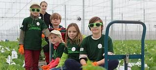 Albertshofen: Kleine Gurken für kleine Gärtner