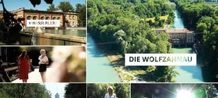 #wassererlebt in der Augsburger Wolfzahnau