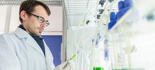 Forscher aus Bremerhaven sehen großes Potenzial in Algen