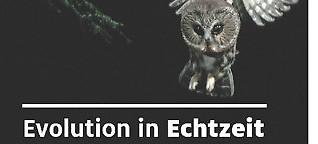 Evolution in Echtzeit
