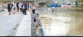 Schwimmen im Donaukanal: Besser als sein Ruf