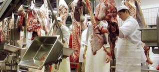 """Schlachthöfe: """"Es braucht eine EU-weite Kontrolle"""""""