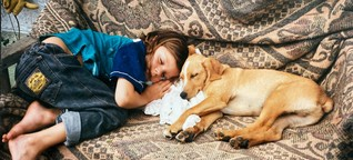 Hundewunsch: Ein Leben mit unerfülltem Hundewunsch
