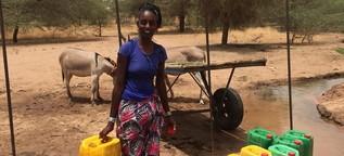 Klimaschutz im Tschad und im Senegal - Die Vision einer grünen Sahelzone