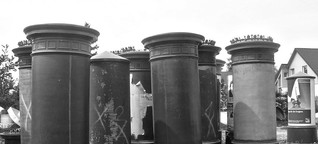 Schade um die schönen Säulen | Spreewild