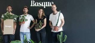 Bosque: Für einen nachhaltigen Umgang mit Pflanzen