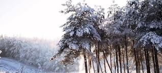 Weihnachtserinnerung - Karl Krolow