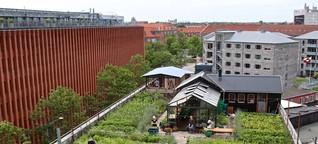 Ein Herz für Grünes: Umweltfreundlicher Urlaub in Kopenhagen