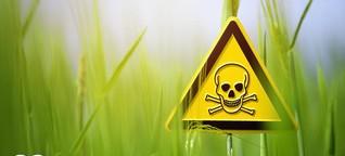 Warum Bayer auch in Chile Ärger hat