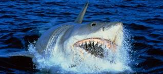 """Zähne zusammenbeißen und Flossen hoch: """"Der weiße Hai"""" wird 45"""