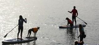 Kapitän mit Fell an Board: Leipzigerin gibt Kurse im Stand-up-Paddling mit Hund