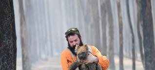Buschbrände in Australien: Sollte man spenden - und wenn ja, wo?