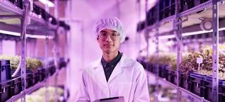 Lebensmitteltechniker /-in: Alle Infos zum Beruf