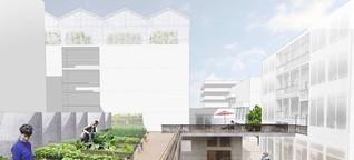 IBA 2027: Winnenden bekommt ein Vorzeige-Quartier