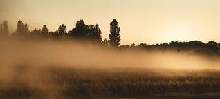 Mit Nachhaltigkeit gegen trockene Böden
