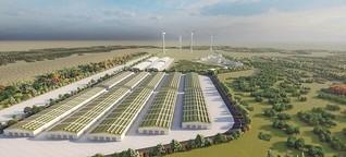 Wie die Energiewende in die Lausitz kommen soll