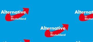 Das Wahlprogramm der AfD 2021 für die Landtagswahl in Baden-Württemberg