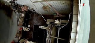 Westpol: Tierquälerei im Schlachthof – was wussten die Behörden?