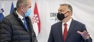 Was Janša und Orban gemein haben