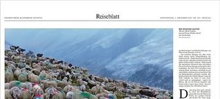 Transhumanz im Schnalstal: Hirten, Hunde, Höhenmeter