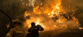 Feuer, Dürren, Temperaturrekorde: Wo Hitze und Brände Leben fordern
