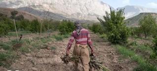 Tensions rise as Iranian dams cut off Iraqi water supplies | DW | 16.08.2021