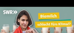 SWR Ökochecker: Bio-, Weide- oder Heumilch - Welche Milch ist die beste Wahl?