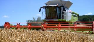 Wahlprogramm-Check: Wer will was bei der Landwirtschaft?