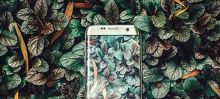 Smartphone aufräumen: In neun Schritten zum Smartphone-Seelenheil