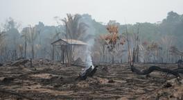 Mehr Umweltdemokratie wagen