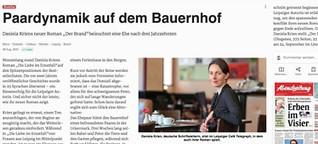 """Rezension von Daniela Kriens Roman """"Der Brand"""""""