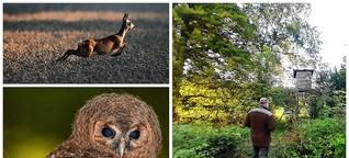 Jagd und Wald - wie ein zweites, pochendes Herz