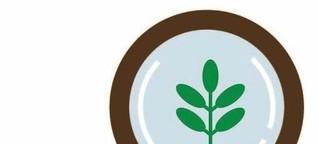 Akte Hakuma: Grüner Tee mit Schönheitsfehlern - Inspektorin Grün