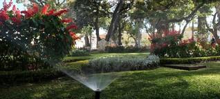 Grünflächen in Bolivien: Ein Garten Eden für Cochabamba