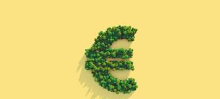 Studie zu nachhaltigen Investitionen: Mit schönen Versprechen in schlechte Geschäfte gelockt